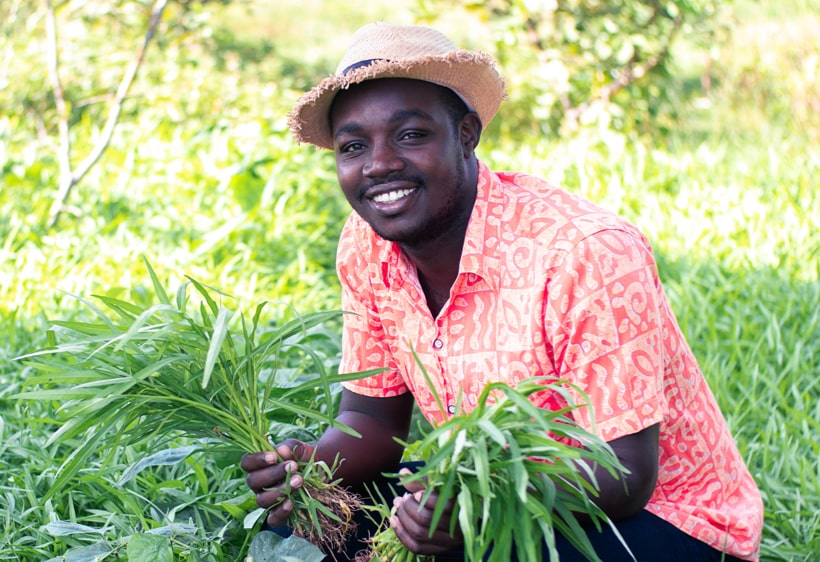 happy-farmer-harvesting-by-hand-southern-africa-trust-1.jpg